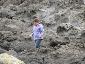 "Our daughter checking out the tidal pools for anything to ""discover"""